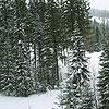 Belaya Ski resort. Ural mountains