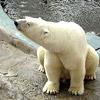 Ekaterinburg Zoo